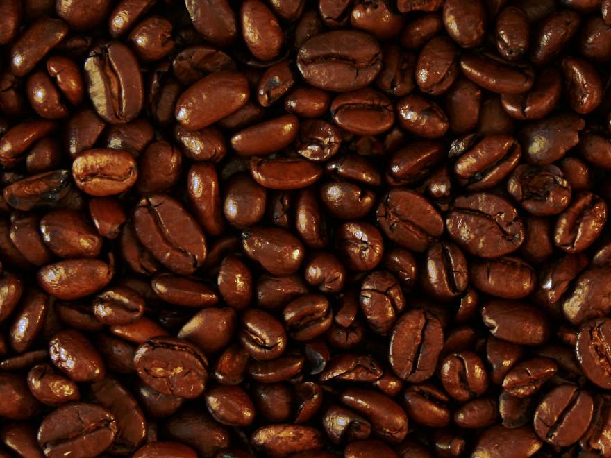 chicchi di caffè di varietà arabica