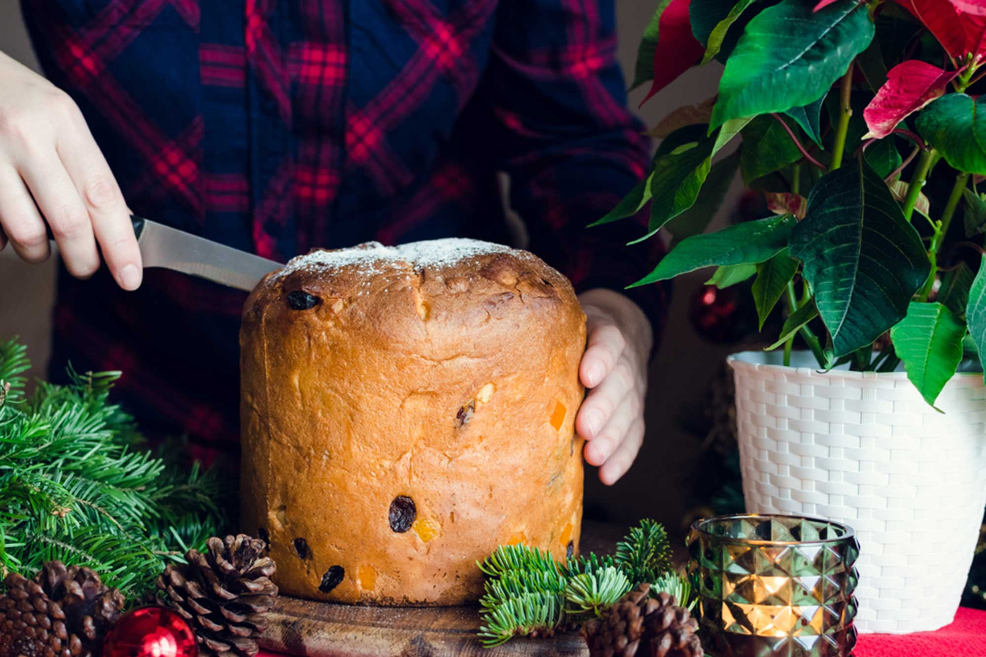 Tronchetto Di Natale Panettone.Come Farcire Il Panettone 5 Ricette Originali Per Il Vostro Natale